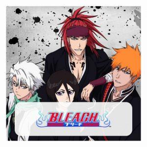 Bleach Puzzles