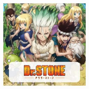Dr Stone Puzzles