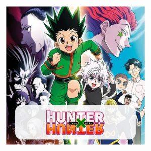 Hunter x Hunter Puzzles
